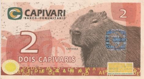 Capivara front_2