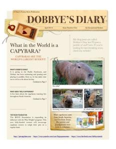 1_2014-4 1 Dobbye's Diary