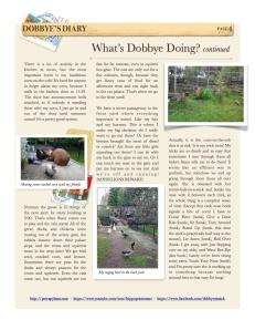 1_2014-4 4 Dobbye's Diary