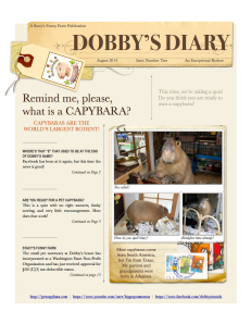 2-2014_1 Dobby's Diary
