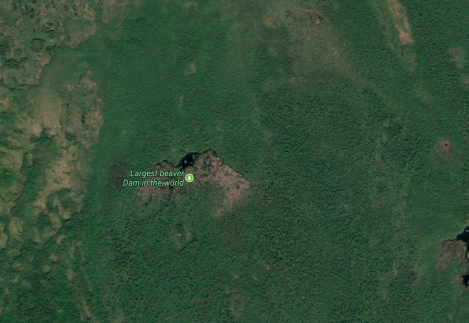 https://www.atlasobscura.com/places/worlds-largest-beaver-dam?